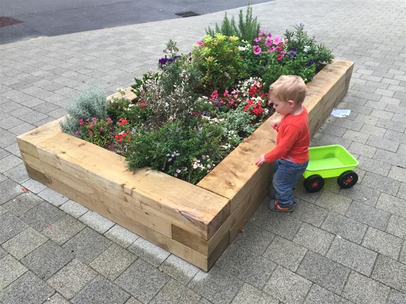 Planter for schools