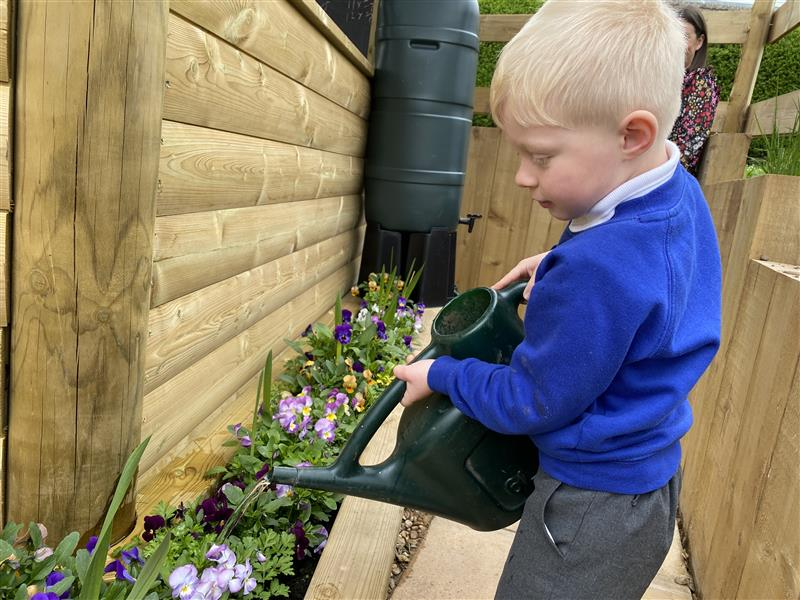 a young boy watering the flowers in the plantares around the edge of the gazebo