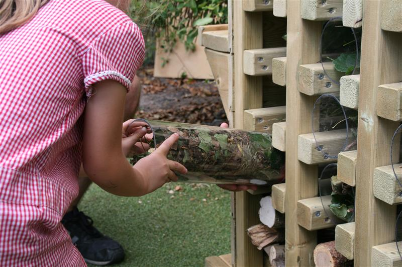 eyfs science lessons