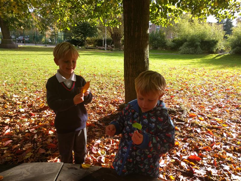 outdoor play during autumn