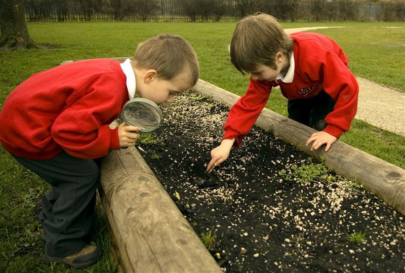 Playground planters for schools
