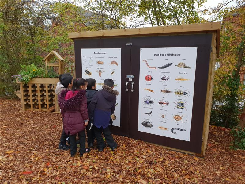 children looking at a minibeast information panel with autumn leaves on the floor