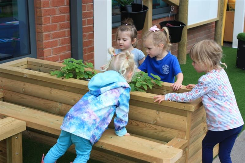 Children investigating plants on a playground planter