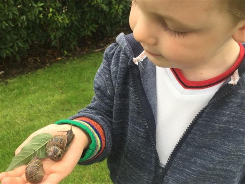 One boy wearing a blue zip jumper and white t-shirt stood in a field with a leaf and 2 snails on his hand, the boy is smiling at the snails looking very interested.