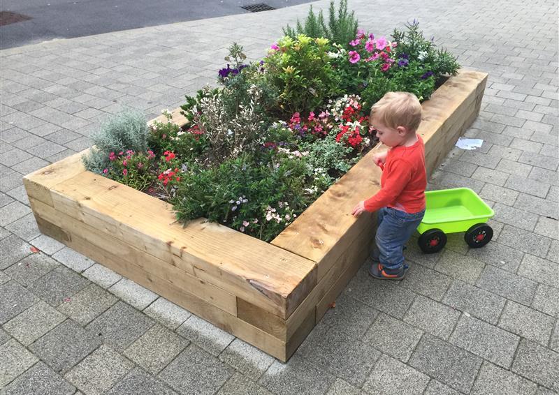 school planters