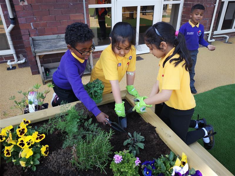 Planters for Schools